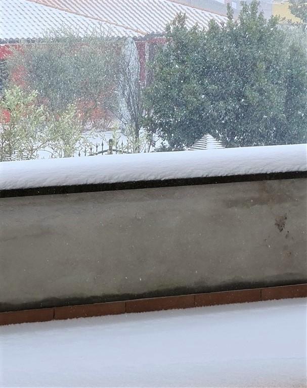La neve a San Lorenzo Nuovo